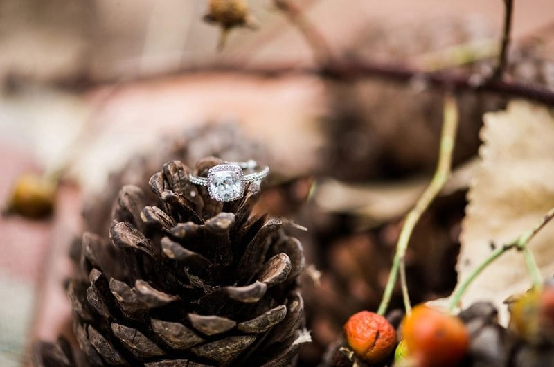 autumn_love_dinner-ring_pinecone