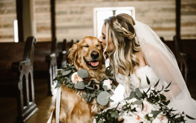 Camp Bow Wow's Tips for Including Your Pet in Your Big Day